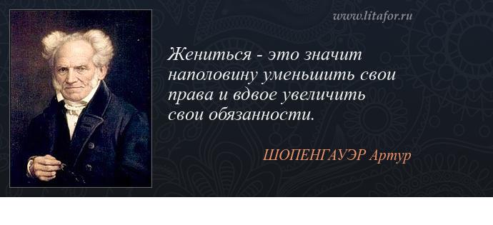 schopenhauer essay